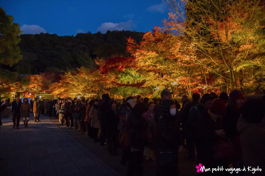 Balade nocturne automnale à Kyoto