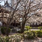 Temple Hyakumanben Chion-ji