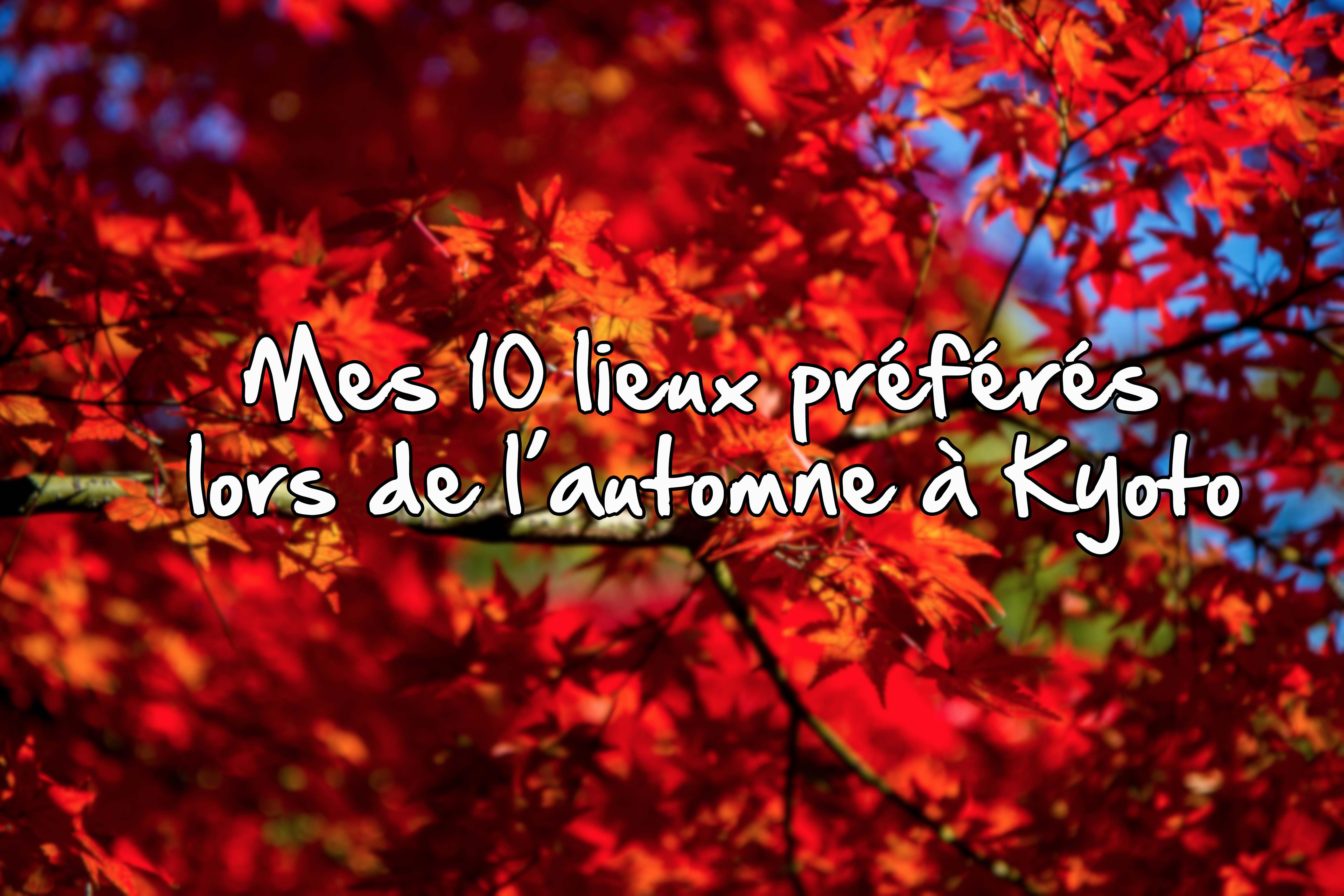 Mes 10 Lieux Pr 233 F 233 R 233 S Lors De L Automne 224 Kyoto