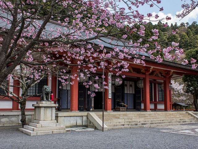 Temple Kurama-dera