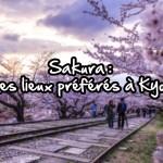Sakura - Mes lieux préféré